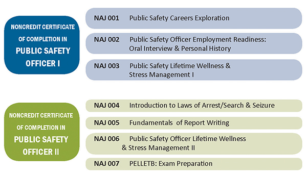 Public Safety Officer Diagram