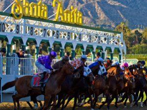 Santa Anita Races