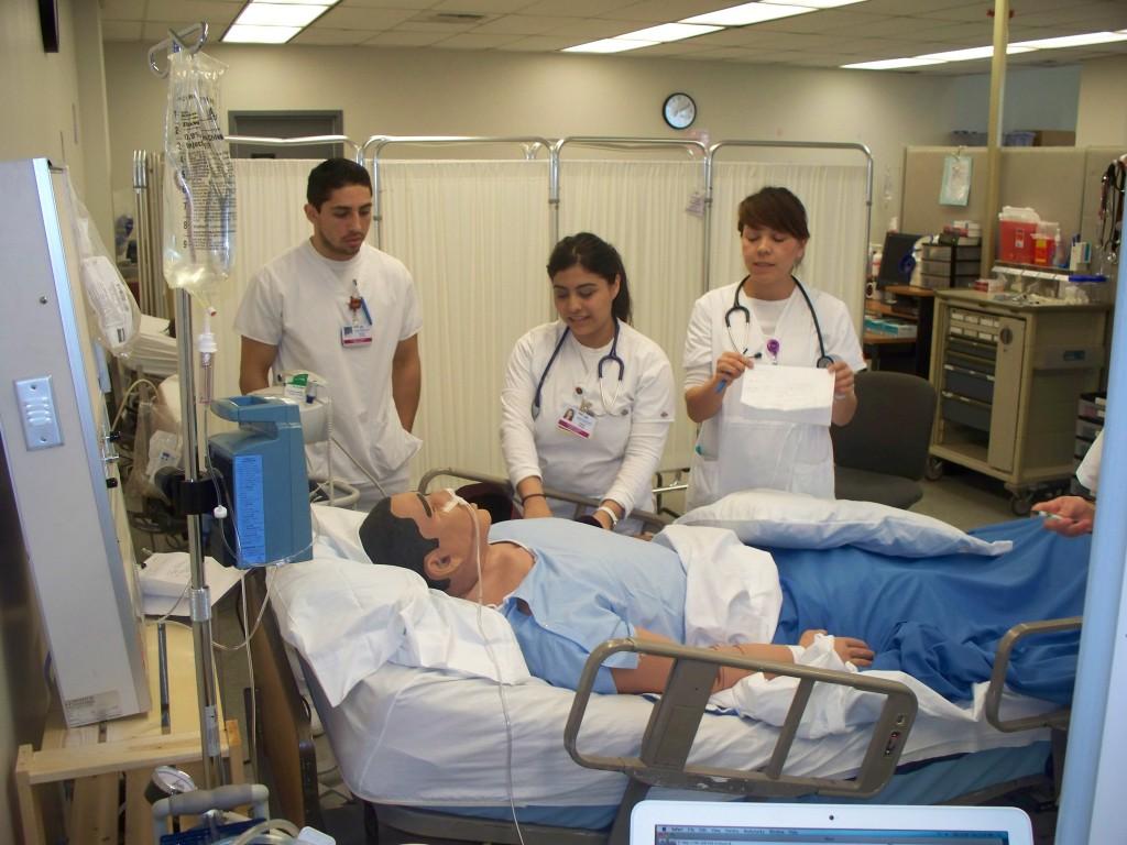 dissertation study related to medical surgical nursing Homework help aol com dissertation study related to medical surgical nursing eskasmepefo pre written essays for sale.